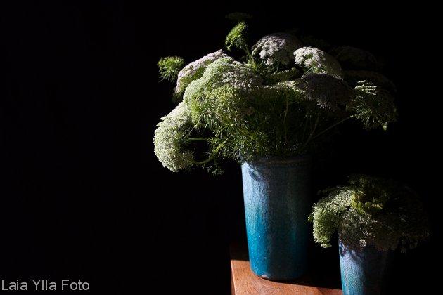 ram studio floral laia ylla