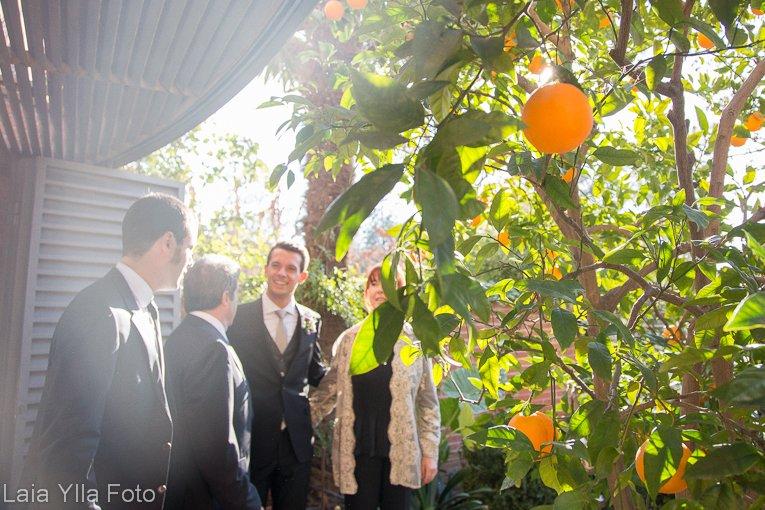 fotografia boda hivern